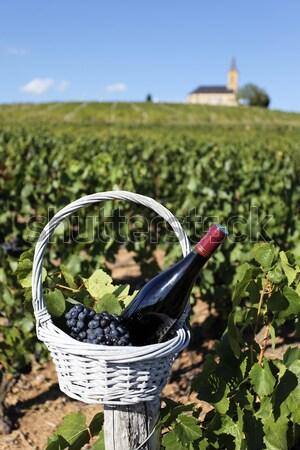 bottle of wine Stock photo © vwalakte