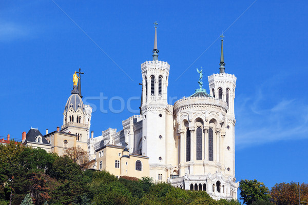 Bazilika Lyon Franciaország fa épület természet Stock fotó © vwalakte