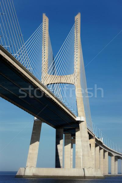 part of the Vasco da Gama bridge Stock photo © vwalakte