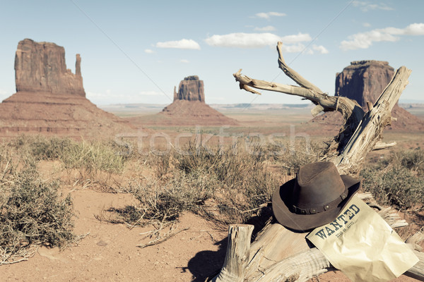 cowboy hat in front of Monument Valley Stock photo © vwalakte