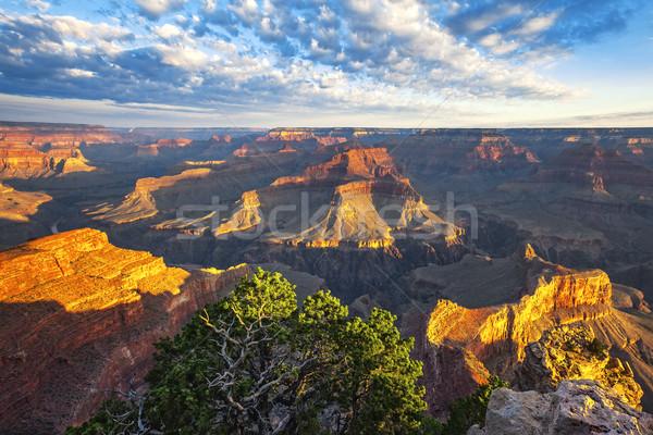 мнение утра свет Гранд-Каньон Аризона США Сток-фото © vwalakte