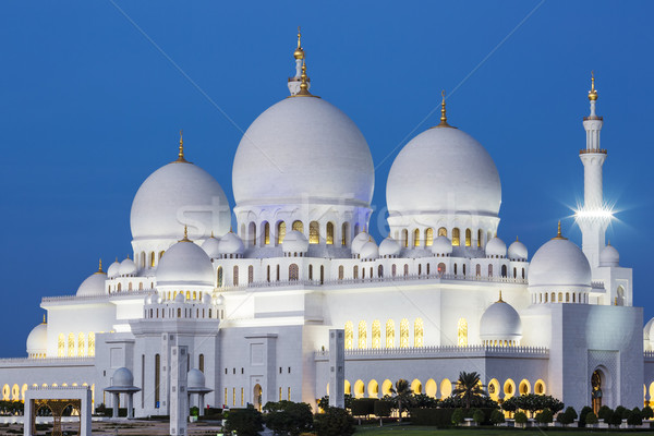 ünlü Abu Dabi cami gece gökyüzü ağaç Stok fotoğraf © vwalakte