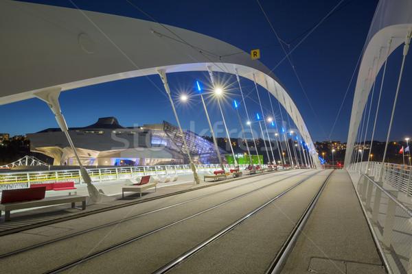 моста ночь Лион город район Франция Сток-фото © vwalakte