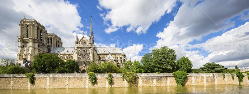 Panoramica view Cattedrale di Notre Dame Parigi Francia Europa Foto d'archivio © vwalakte