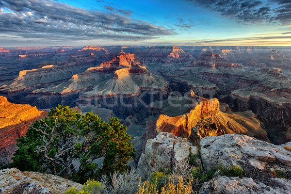 horizontal view of Grand Canyon Stock photo © vwalakte