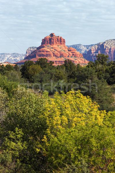 red rock of Sedona Stock photo © vwalakte