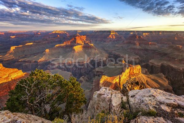 水平な 表示 グランドキャニオン 日の出 旅行 岩 ストックフォト © vwalakte