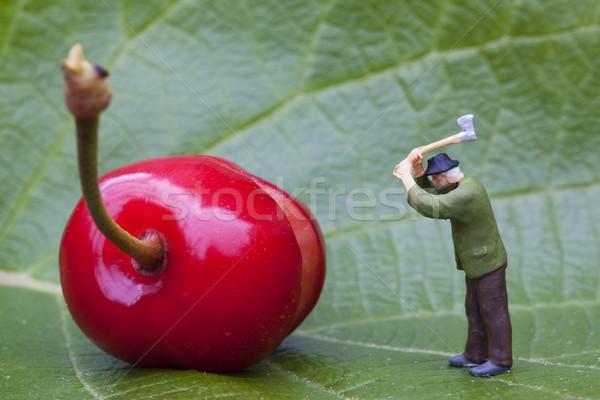 Вишневое лесоруб статуэтка лист фрукты саду Сток-фото © vwalakte