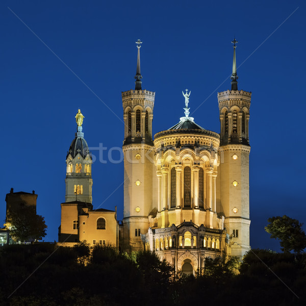 Basiliek lady Lyon Frankrijk nacht huis Stockfoto © vwalakte