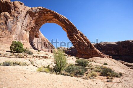 The famous Corona Arch Stock photo © vwalakte