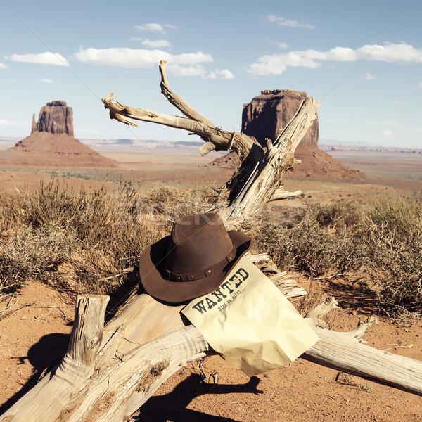 коричневый ковбойской шляпе долины США фон кожа Сток-фото © vwalakte