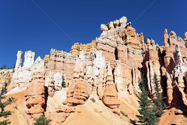 Navajo Trail in Bryce Canyon Stock photo © vwalakte