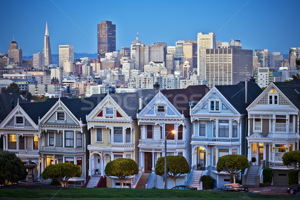 Famous Painted Ladies of San Francisco Stock photo © vwalakte