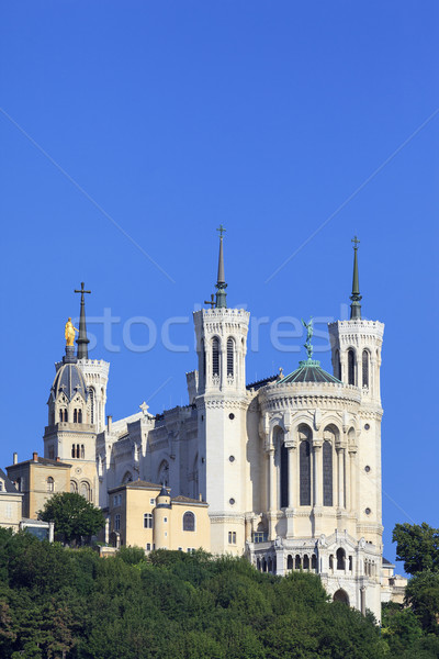 Vertical vue basilique dame Lyon France Photo stock © vwalakte