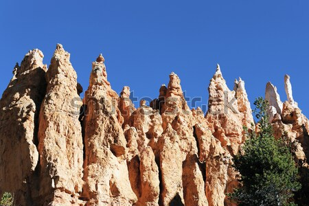 Bryce Canyon landscape Stock photo © vwalakte