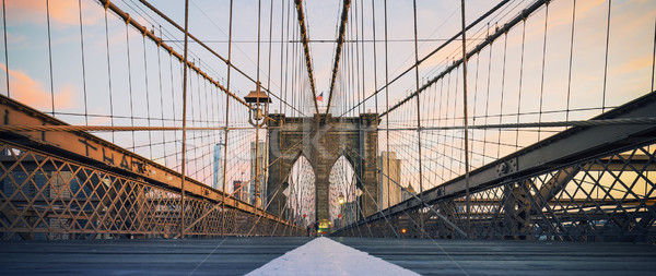 Panoramic view on Brooklyn Bridge Stock photo © vwalakte
