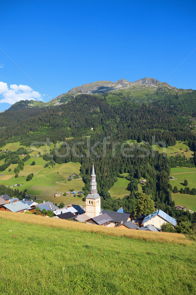 french village in alps Stock photo © vwalakte