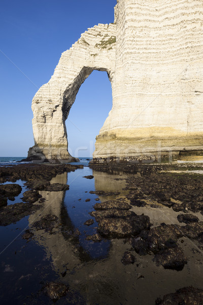 Vertical view of Etretat Aval cliff Stock photo © vwalakte