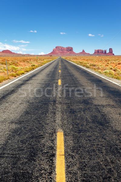 Famous Road Stock photo © vwalakte