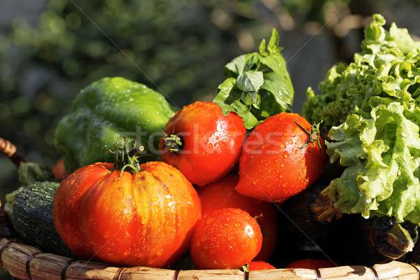 Umido verdura tavola giardino rosso mercato Foto d'archivio © vwalakte