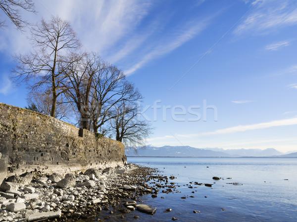 Foto stock: Lago · rochas · árvores · praia · pedras · céu