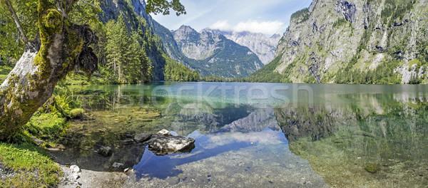 Panorama lake Obersee Stock photo © w20er