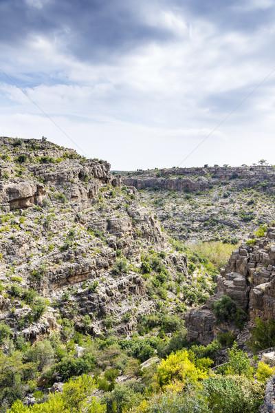 Umman görüntü manzara yol doğa seyahat Stok fotoğraf © w20er