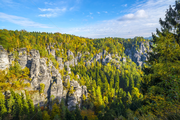 Lanscape in Saxon Switzerland near Bastei Stock photo © w20er