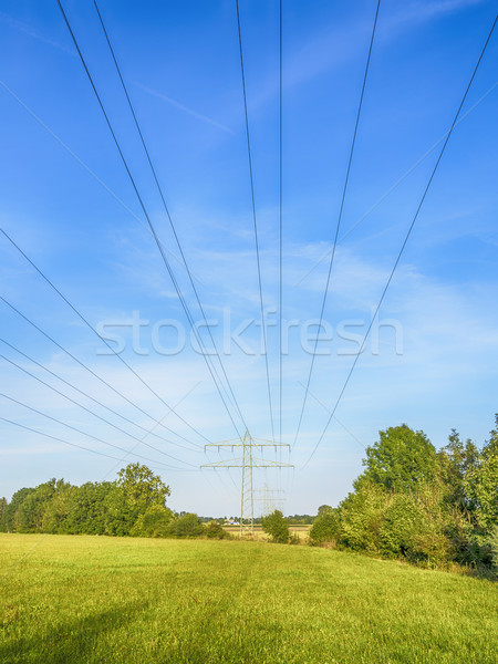 Power calbe over green meadow Stock photo © w20er