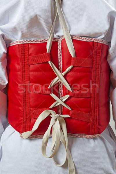 Taekwondo lichaam vest Rood sport zwarte Stockfoto © w20er