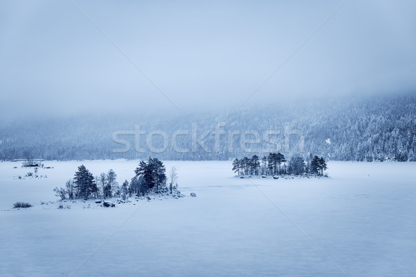 Forest and lake Eibsee with snow Bavaria Stock photo © w20er