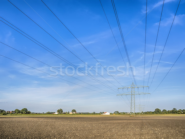 Power calbe over a field Stock photo © w20er