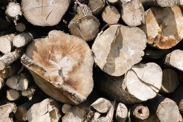 рубленый дерево фотография древесины Сток-фото © w20er
