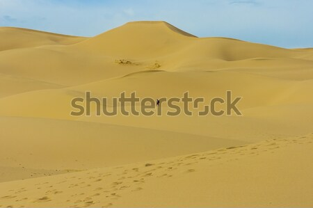 Duna Mongolia desierto una persona cielo paisaje Foto stock © w20er
