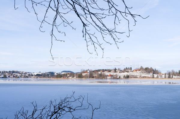 Göl görüntü dondurulmuş Almanya kış ahşap Stok fotoğraf © w20er