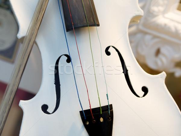 Fehér hegedű kép fa háttér koncert Stock fotó © w20er