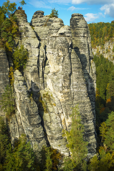Scenery in Saxon Switzerland Stock photo © w20er