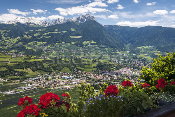 Village in South Tirol Stock photo © w20er