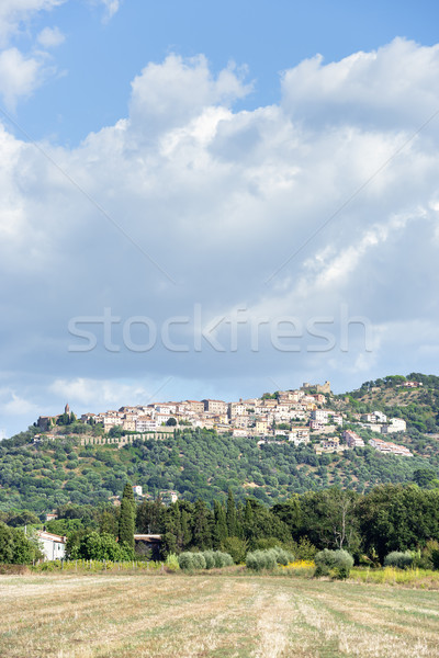 View to Montepulciano Stock photo © w20er