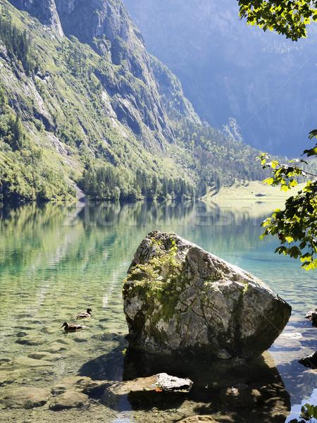 Lake Obersee Stock photo © w20er