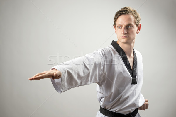 Taekwon-Do man Stock photo © w20er