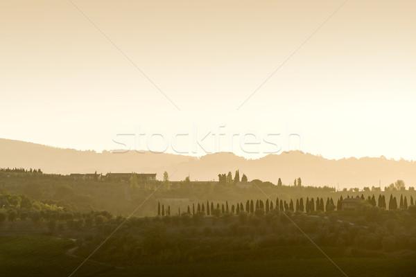 Тоскана пейзаж закат холмы домах небе Сток-фото © w20er