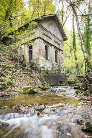 Creek in forest with old house Stock photo © w20er