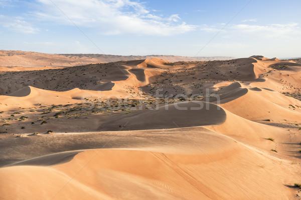 çöl Umman yeşil bulutlar mavi gökyüzü Stok fotoğraf © w20er