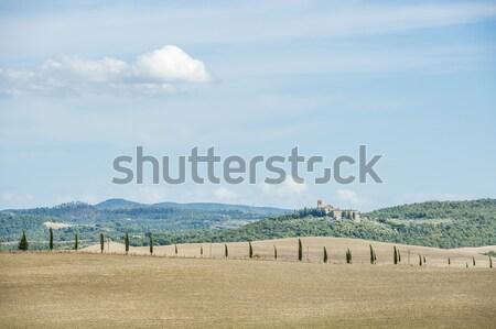 美しい 風景 トスカーナ 画像 イタリア ツリー ストックフォト © w20er