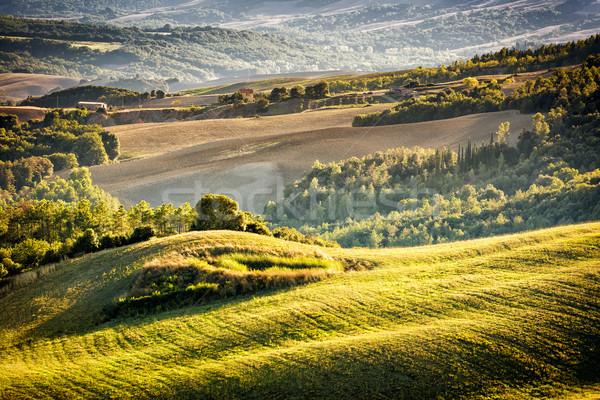 Тоскана пейзаж закат холмы деревья Италия Сток-фото © w20er