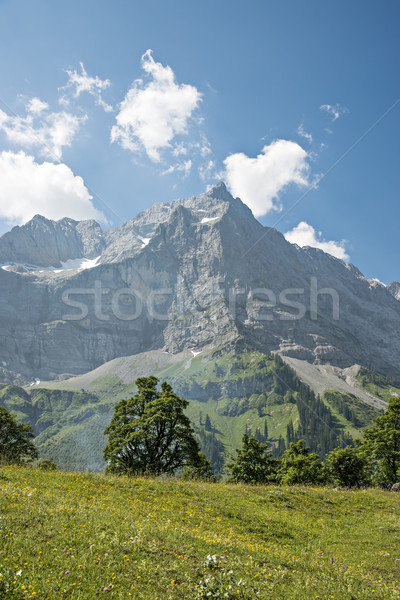 Alps in Austria Stock photo © w20er