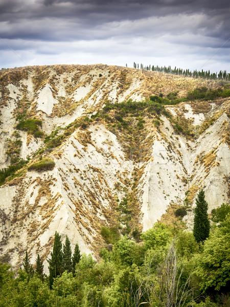 風景 トスカーナ 砂の 丘 木 ストックフォト © w20er