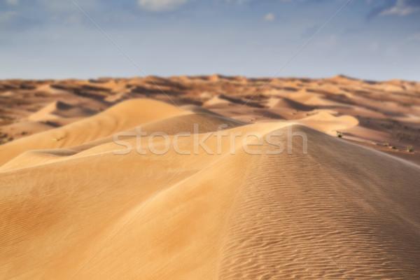 çöl Umman bulutlar mavi gökyüzü gökyüzü manzara Stok fotoğraf © w20er