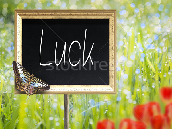 Chalkboard with text Luck Stock photo © w20er